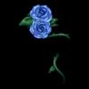 https://www.eldarya.pl/assets/img/item/player//icon/0fd6cc8f10030e66516de9212560c872~1604513563.png