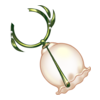 https://www.eldarya.pl/assets/img/item/player//icon/33da557a5276059074882f4dabfca40c~1531746146.png
