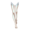 https://www.eldarya.pl/assets/img/item/player//icon/870393a74527475db60b0029a9598e81~1544028730.png