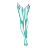 https://www.eldarya.pl/assets/img/item/player//icon/8d020e5c237d70c849892702d1676352~1544028752.png