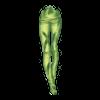 https://www.eldarya.pl/static/img/item/player/icon/b6334efd9d30991bdcd23feb660113bd.png