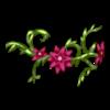 https://www.eldarya.pl/assets/img/item/player/icon/c2c65cd79c9594ff2490b1cc56f1158a~1445257252.png