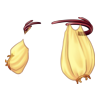 https://www.eldarya.pl/assets/img/item/player/icon/f016c6fe65f04debb6a9ce7a72332523.png